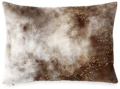 Painted Sky Decorative Pillow Bedding