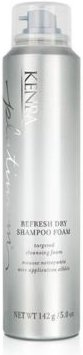 Platinum Refresh Dry Shampoo Foam, 5-oz, from Purebeauty Salon & Spa