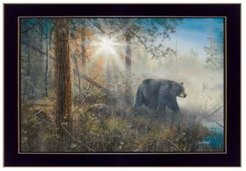 "Shadow in the Mist By Jim Hansen, Printed Wall Art, Ready to hang, Black Frame, 20"" x 14"""