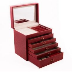 Ostrich Jewelry Chest with Removable Travel Case, 5 Drawers and Top Tray with Mirror