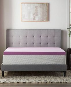"""Dream Collection by Lucid 3"""" Lavender Memory Foam Mattress Topper, Twin Xl"""