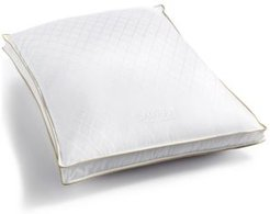 Winston Firm Standard/Queen Pillow
