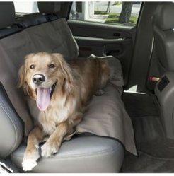 Universal Water Resistant Back Seat Cover