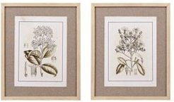 Martha Stewart Tinted Botanical Set Single Linen Mat Framed Graphic 2-Pc Set