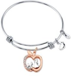 Snow White Crystal Apple Silver Plated Charm Adjustable Bangle Bracelet in Two-Tone Stainless Steel for Unwritten