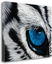"""Tiger Eye by Jan Henderson Giclee Print on Gallery Wrap Canvas, 36"""" x 28"""""""
