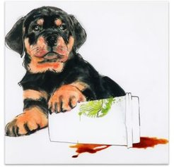 """Java's Paw Frameless Free Floating Tempered Glass Panel Graphic Dog Wall Art, 20"""" x 20"""" x 0.2"""""""