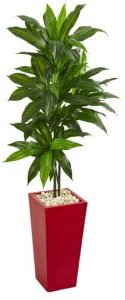 5' Dracaena Artificial Plant in Red Planter - Real Touch