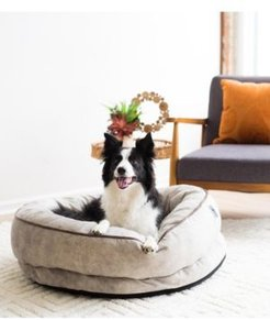 """36"""" x 33"""" Buddy Lounger Dog Bed"""