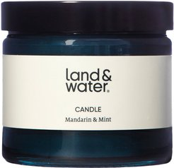 Mandarin & Mint Scented Candle