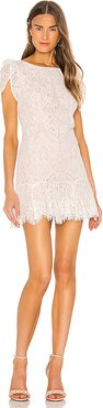 Fast Lace Environment Dress in White. (also in 0,2,4,6)