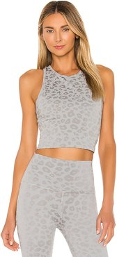 Leopard Studio Cropped Tank in Grey. - size L (also in M,S,XS)