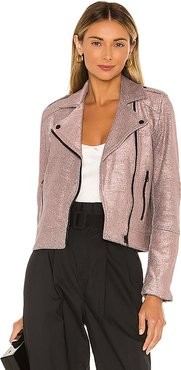 Hollister Metallic Knit Moto Jacket in Blush. - size XS (also in M,S)