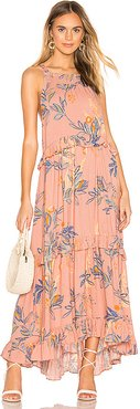 Anita Printed Maxi Dress in Pink. - size XS (also in L,M,S)