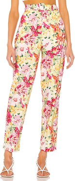 Jessica Pant in Yellow,Pink. - size XL (also in L,M,S,XS,XXS)