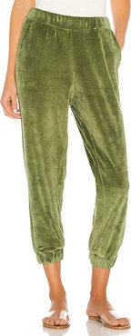 Hoi Hoi Pant in Green. - size 1/S (also in 2/M)