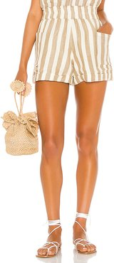 Disilvio Shorts in Tan,Cream. - size M (also in S,L,XS)