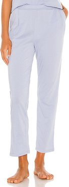 Elaine Ankle Pant in Baby Blue. - size L (also in M)