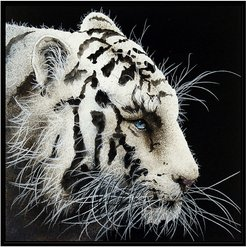 "Jonathan Bass Studio ""Study in Whiskers"" Canvas Print"