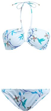 Kate Floral-print Bikini Set - Womens - Blue Multi