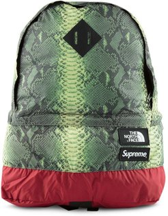 TNF Snakeskin Lightweight Day backpack - Green