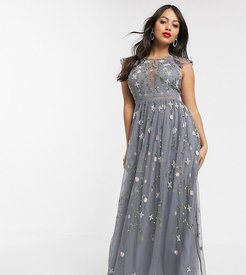 ASOS DESIGN Petite pretty embroidered floral and sequin mesh maxi dress-Multi