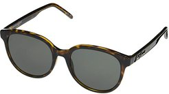 SL 317 (Havana) Fashion Sunglasses