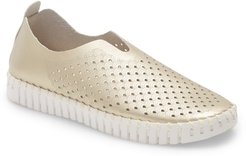 Tulip 139 Perforated Slip-On Sneaker