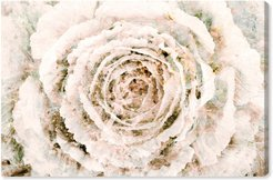 Brown Winter Flower Canvas Wall Art