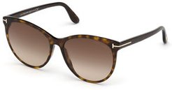 Maxim Cat-Eye Acetate Sunglasses