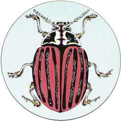 Rose Beetle Placemat