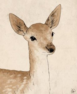 "Little Rustic Deer Drawing 16"" X 20"" Canvas Wall Art Print"