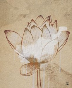 "Sacred Lotus Flower Drawing 20"" X 24"" Canvas Wall Art Print"