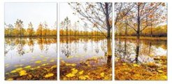 "Decor Falling Leaves 3 Piece Wrapped Canvas Wall Art Autumn -20"" x 40"""