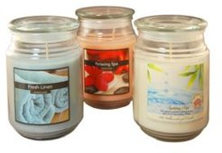 Lumabase Set of 3, 18oz Fresh Scented Candles in Apothecary Jars
