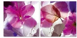"Decor Orchid 2 Piece Wrapped Canvas Wall Art Floral Design -16"" x 32"""