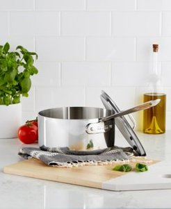 Stainless Steel 3 Qt. Covered Saucepan
