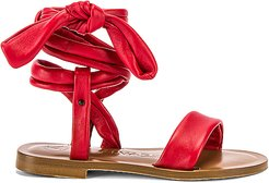 Aroa Sandal in Red. - size 36 (also in 36.5,37.5)