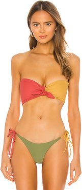 Bad Behavior Bridget Bikini Top in Mustard, Burgundy. - size M (also in XS,S,L)