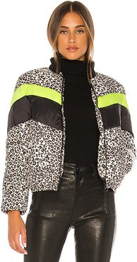 Copenhagen Printed Puffer in Black,Green,Brown. - size XS (also in S,M)