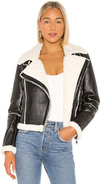 Genna Zip Up Jacket in Black. - size XL (also in L,M,S,XS,XXS)