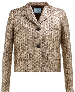 Cropped Single Breasted Geometric Brocade Jacket - Womens - Silver Multi