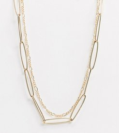 Exclusive delicate chain necklace multi-pack in gold