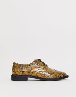 More flat lace up shoes in snake-Multi