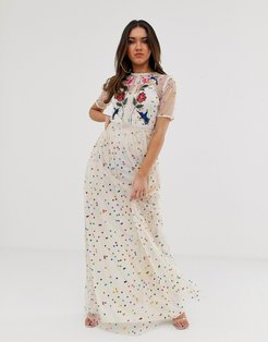 floral and bird embroidered maxi dress in allover rainbow polka print-Multi