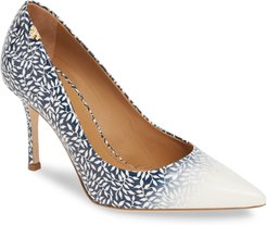 Penelope Ombre Pointy Toe Pump