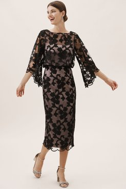 Js Collection Sidonie Dress In Black/almond - Size: 10