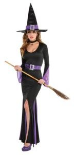 Witchy Witch Adult Women's Costume