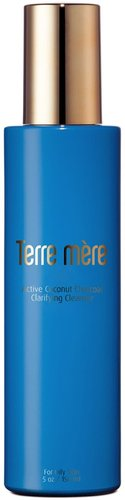 Terre Mere Active Coconut Charcoal Clarifying Cleanser at Nordstrom Rack